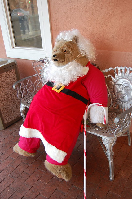Santa Bear in Old Town Albuquerque