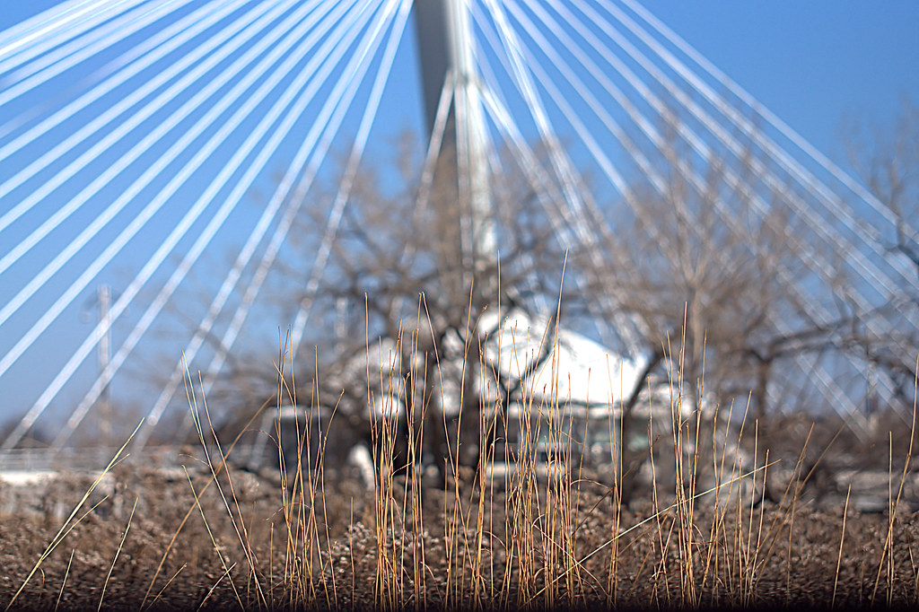 Louis Riel Bridge