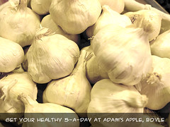 Garlic at Adam's Apple