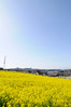 Photo:20100314 Aichi Farm 7 (Yellow carpet) By BONGURI