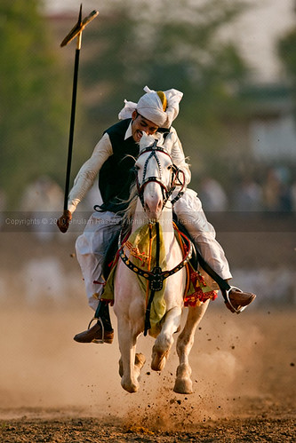 National Tent Pegging Competition 2010