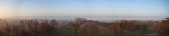 Morning Fog, Panorama, 19 Nov 2009