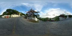 Almond Grove (3)
