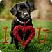 I heart U by Aaryn with a Y
