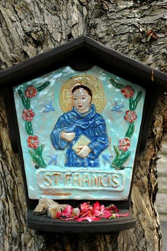 Saint Francis plaque, flowers, Meditation Garden - Self-Realization Fellowship, Encinitas, California, USA by Wonderlane