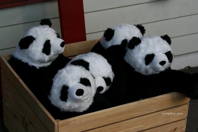 Panda Stockpiling Time?