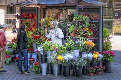 Florist's Shop – Floristería, Madrid, HDR