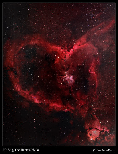 IC1805 The Heart Nebula; cool head and a warm heart