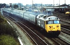 Class 50 Locomotives.