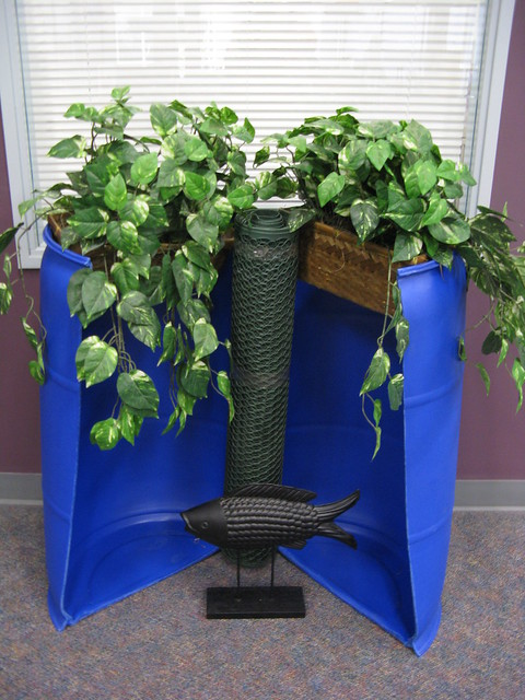 Hydroponic fish barrel model flickr photo sharing for Hydroponic garden with fish