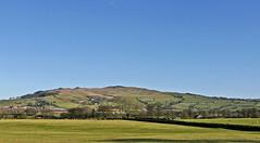 Skipton Moor