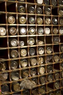 Een kast vol kruiden bij een Chinese kruidenapotheek