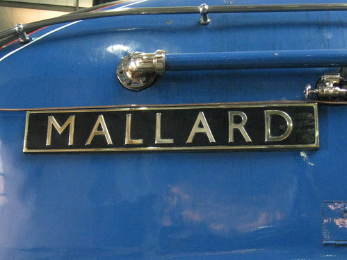 Mallard name plate