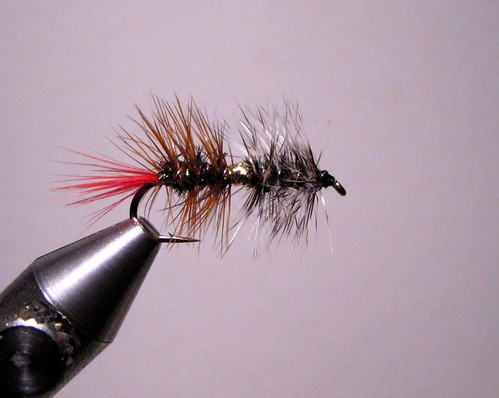 Jay s mckenzie guide secret classic trout attractor for Fly fishing tying