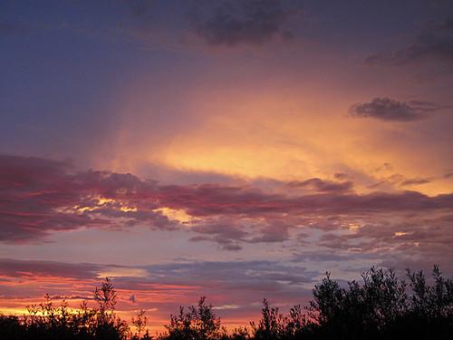 sunset clouds nubes puestadesol olivos cáceres nwn extremadura malpartidadecáceres