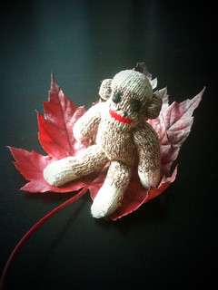 Sock Monkey Rides into Fall