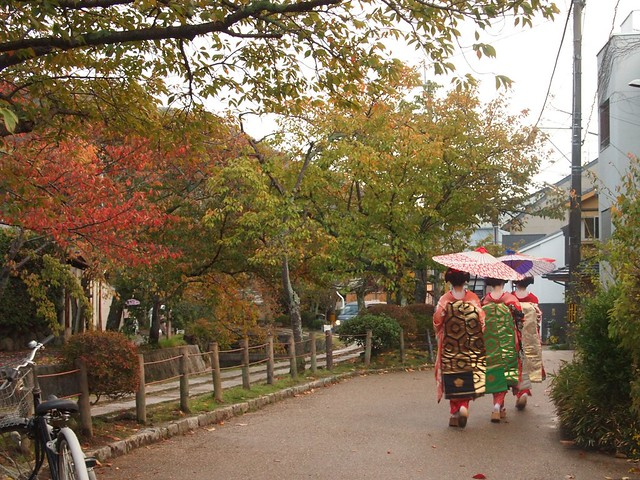 Maiko on the Philosopher's Path