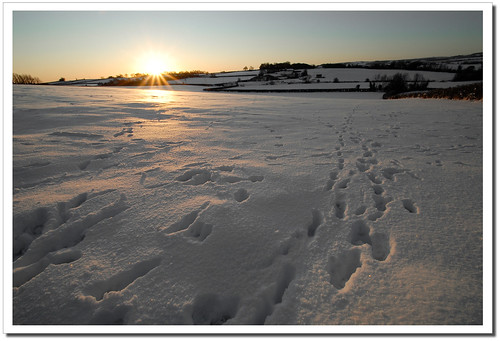 Snowfields of Siber.... Somerset!