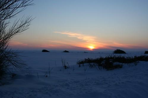winter sunset snow nature denmark 2010
