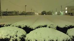 雪 入間市