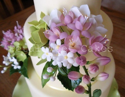 Freesia Bouquets by Petalsweet Cakes