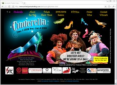 STC Cinderella Flash Website