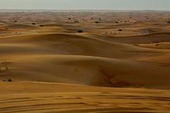 plain(0.0), plateau(0.0), wadi(0.0), grassland(0.0), erg(1.0), sand(1.0), aeolian landform(1.0), natural environment(1.0), desert(1.0), landscape(1.0), sahara(1.0), singing sand(1.0),