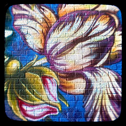 Kwiaty graffiti