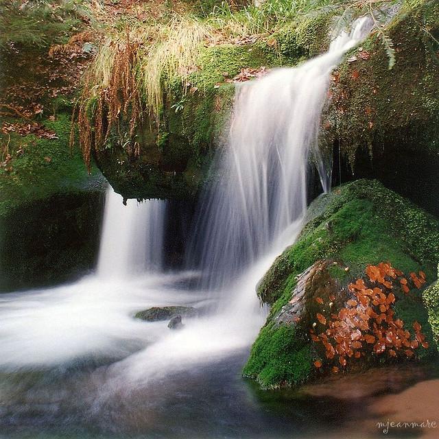 cascades, La Sauteuse (Massif du Donon)