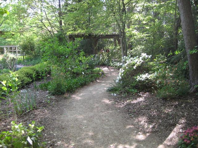Nc Botanical Garden Chapel Hill Explore Kmoliver 39 S Photos Flickr Photo Sharing