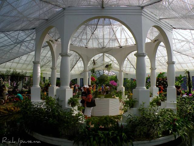 festa jardim botanico:Orquidário – Jardim Botânico do Rio de Janeiro