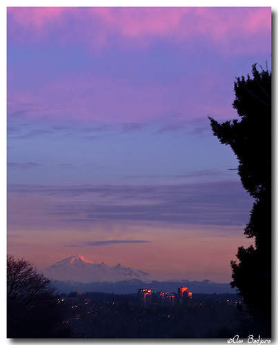 pink sunset sky usa mountain tree nature vancouver clouds buildings reflections landscape lights evening washington scenery view surrey mountbaker newwestminster greatervancouver