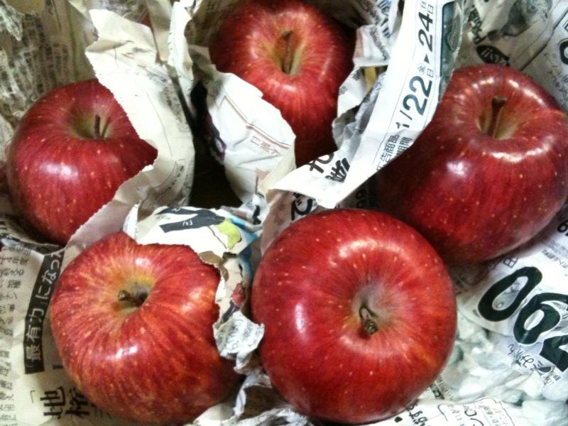 信州のリンゴを頂きました!