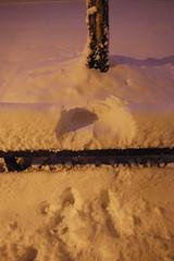 Bench Snow Angel