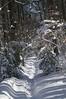100206_SnowStorm_49