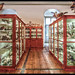 Natural History Museum in Admont in HDR by ognipensierovo