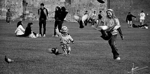 Felicità (Pisa)