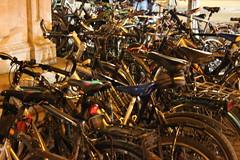 host of bikes