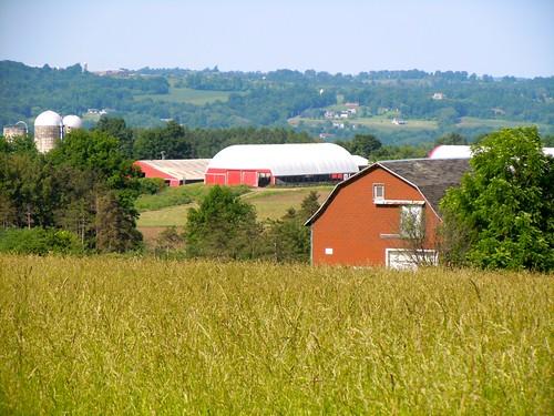 barn farm hills onondaga