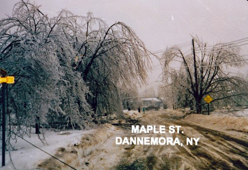 Ice Storm Flickr Photo Sharing