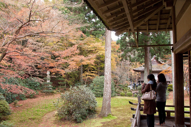 Autumn Foliage at San'zen'in in Ohara, Kyoto - 21