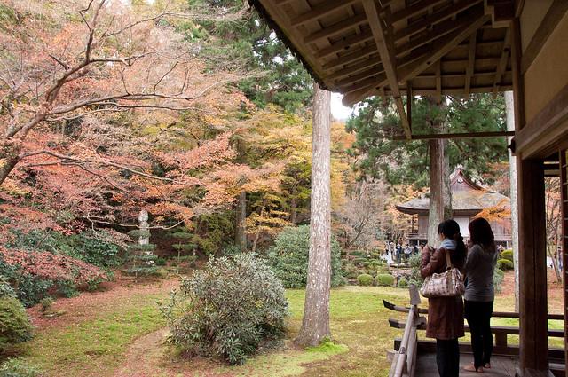 Autumn Foliage at San'zen'in in Ohara, Kyoto - 21