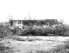 Battery Croghan, Fort San Jacinto, Galveston, Texas 0116101712BW