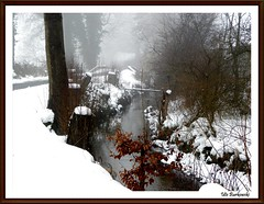 Winter 2009 / 2010