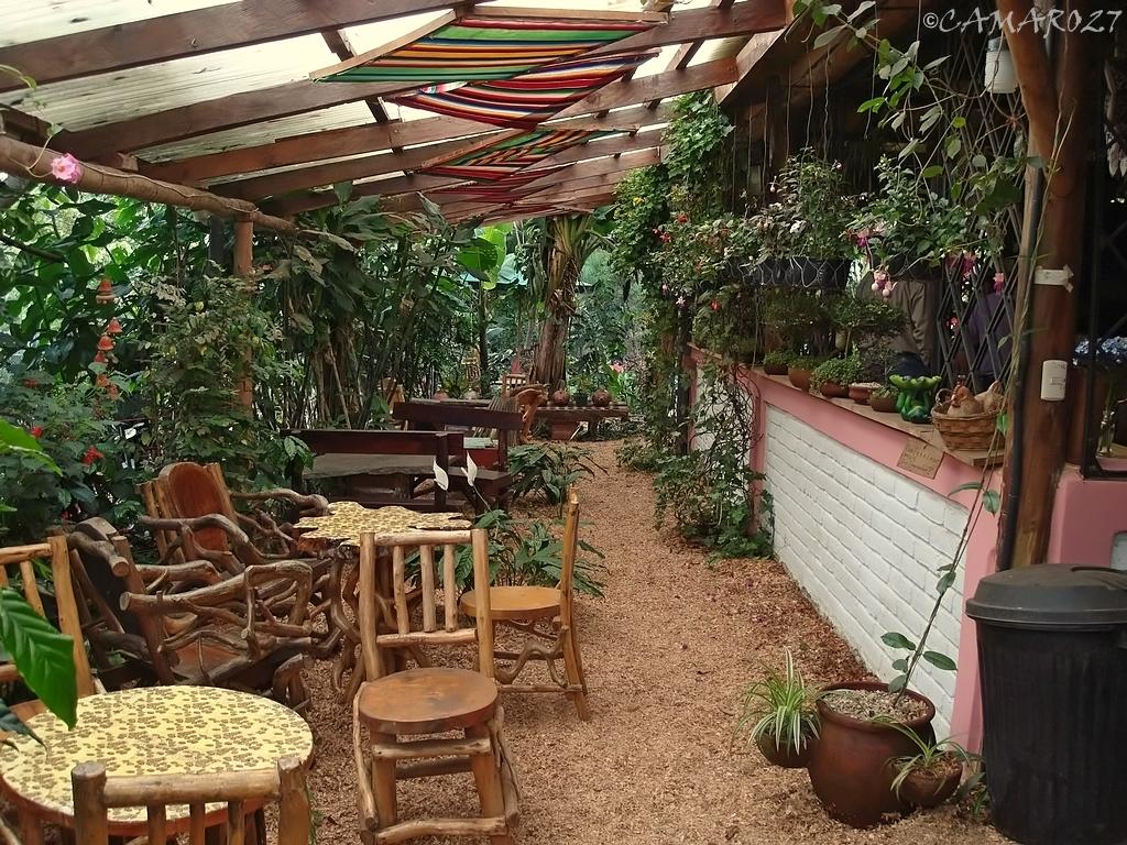 Entre nubes caf departamento de ahuachap n el salvador for Cafe el jardin secreto