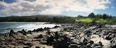 Honokahua Bay Panorama