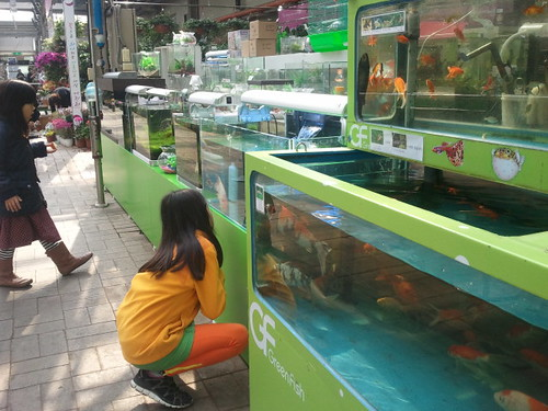 고양 하나로마트화훼도매센터