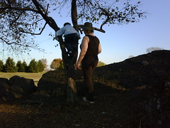 Mommies Are For Climbing Trees