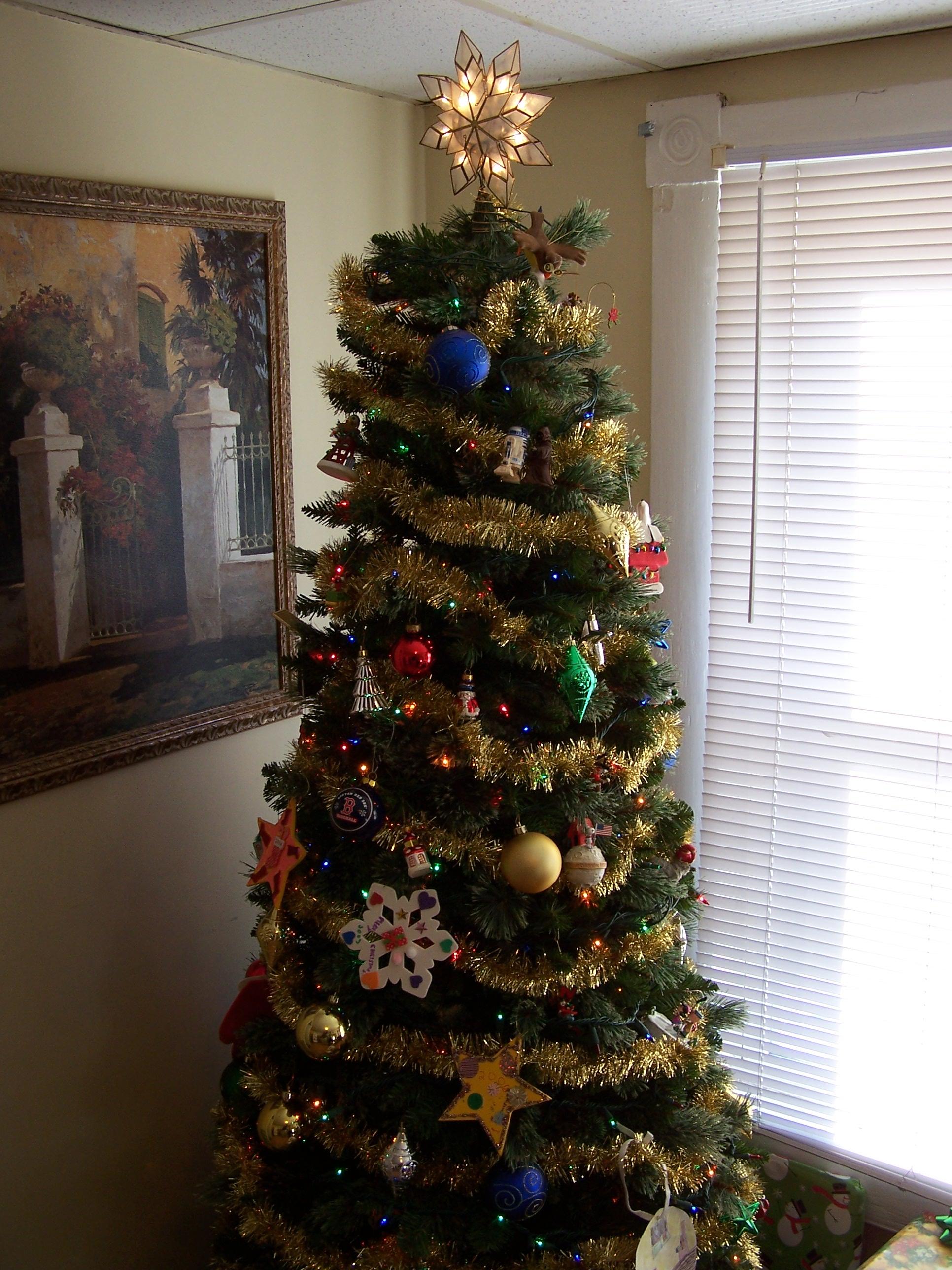 2009-12-24 and 25 - Christmas 001