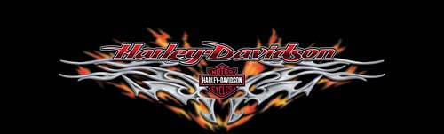 Harley-Davidson Rear Window Graphics